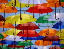 Umbrellas pexels cc0 216x165